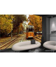 Yellow Tram 3