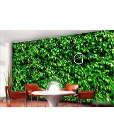 Green Wall 2